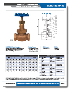 NCI Bronze Globe Valves Class 300 Threaded NPT or Solder Brochure